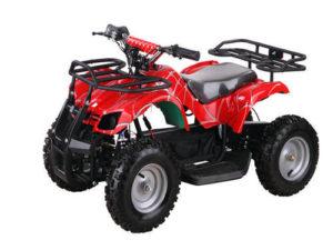 Mini ATV